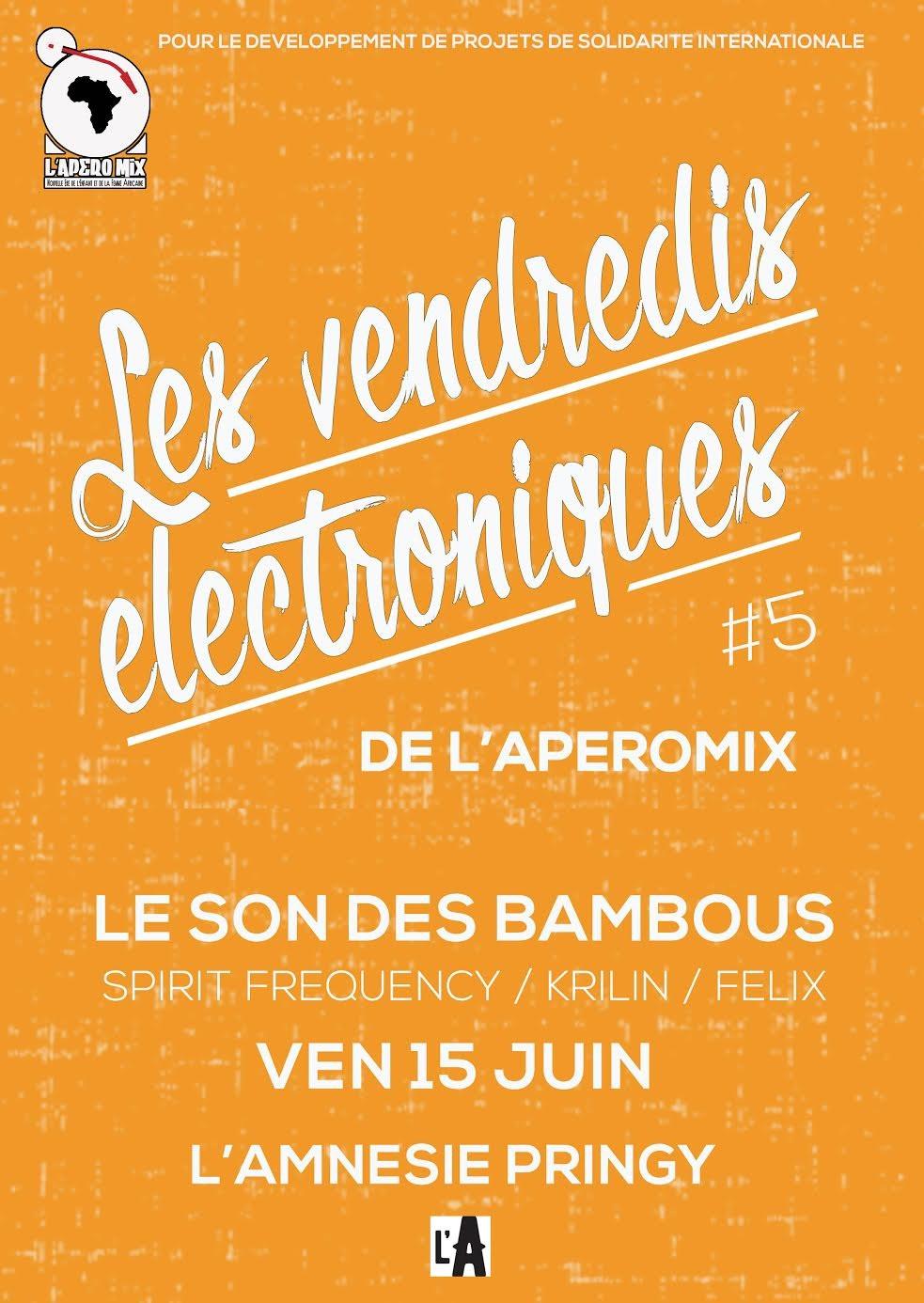 Vendredis Electroniques #5 - l'Amnésie