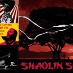 Shaolin Soul (Chambery)